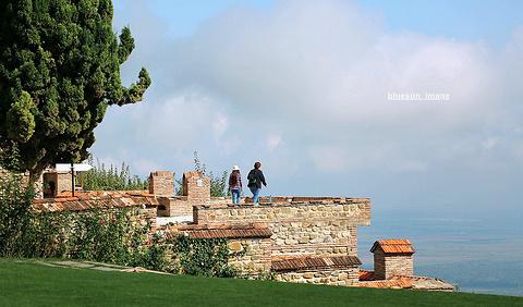 西格纳吉旅游图片