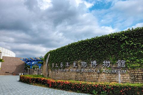 台湾海洋生物博物馆的图片