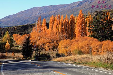 皇冠山脉公路