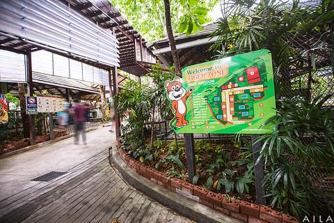 老虎园旅游景点攻略图