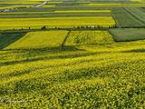肃南旅游景点攻略图片