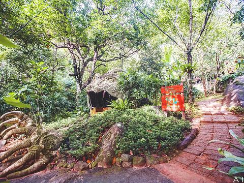 丛林飞跃Flying Hanuman旅游景点图片