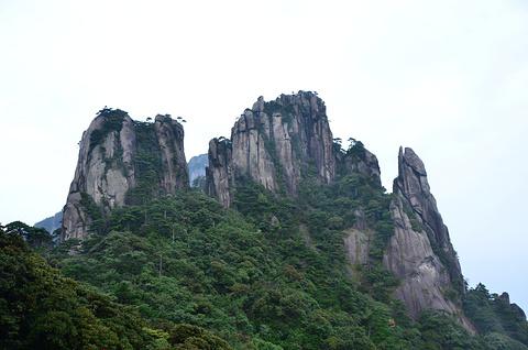 南清园旅游图片