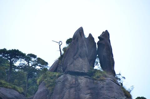 巨蟒出山旅游图片