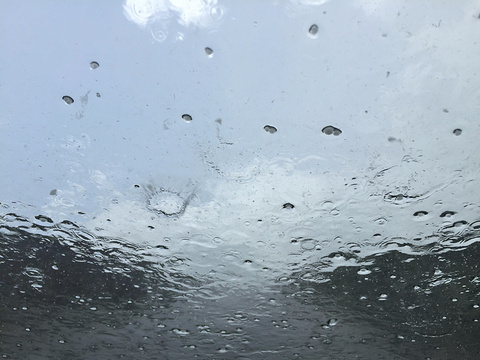 日干乔大沼泽旅游景点图片