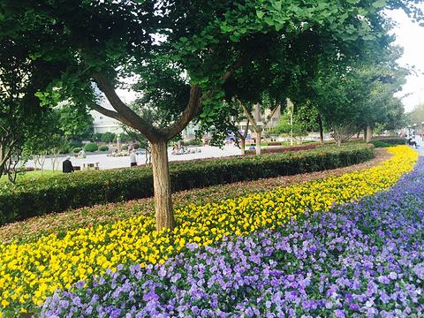 西北湖绿化广场旅游景点攻略图