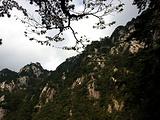 黄石旅游景点攻略图片