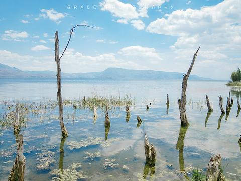 海舌生态公园旅游景点图片