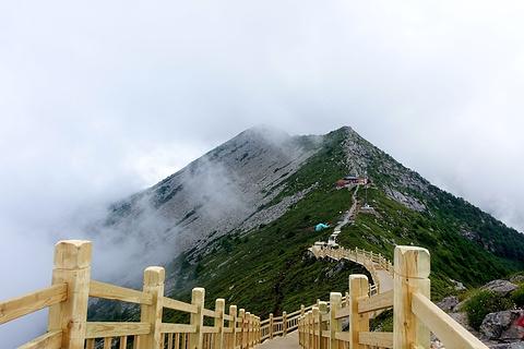 太白山国家森林公园的图片