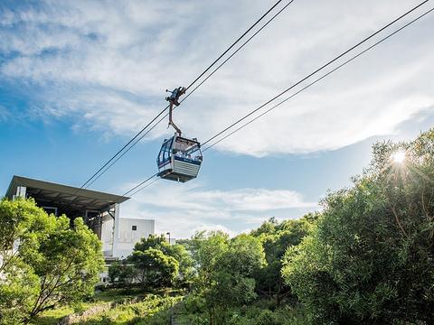 昂坪360缆车旅游景点图片