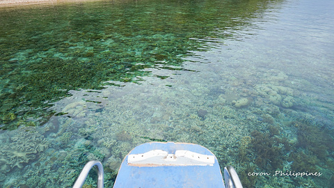 珊瑚花园旅游景点攻略图