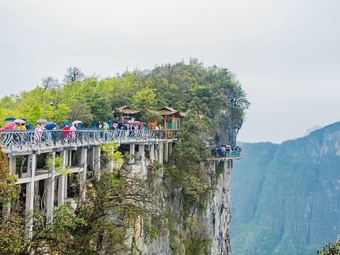 天门山玻璃栈道旅游景点图片