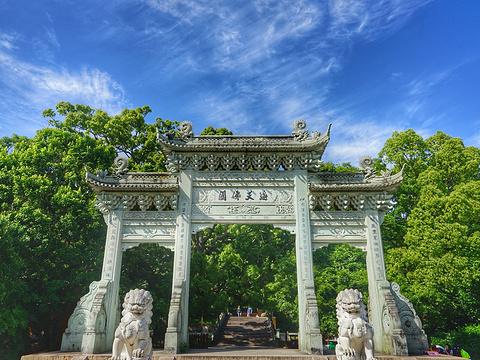 法雨寺旅游景点图片
