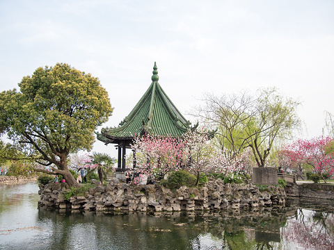 蠡园旅游景点图片