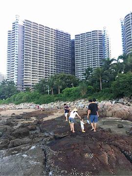 礁石公园旅游景点攻略图