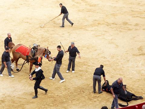瓦伦西亚斗牛场旅游景点图片