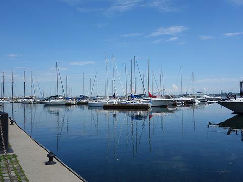 安大略湖旅游景点图片