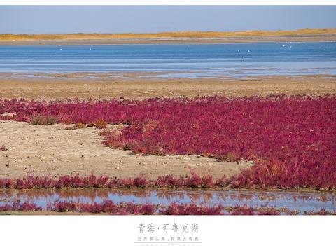 托素湖旅游景点图片