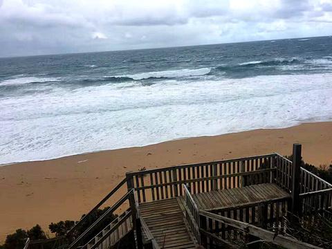 洛根海滩赏鲸平台旅游景点图片