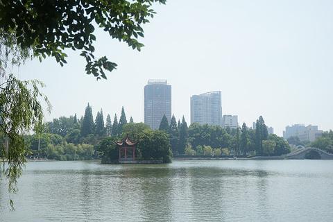 镜湖公园旅游景点攻略图