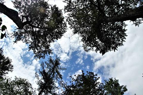 宁安市火山口国家森林公园旅游景点攻略图