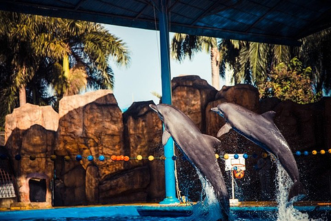 南宁市动物园旅游景点攻略图