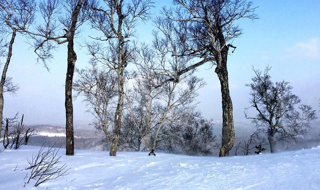 泡汤滑雪休闲3日线路