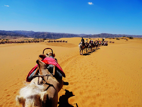 腾格里沙漠旅游景点图片