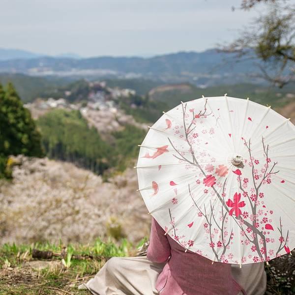 2017吉野山 旅游攻略 门票 地址 游记点评,奈良旅游景点 酒店 购物 美