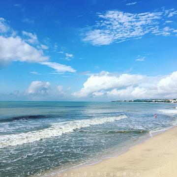 美奈海滩的图片