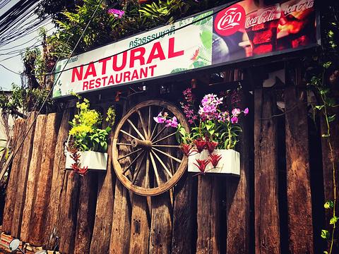 自然餐厅旅游景点图片