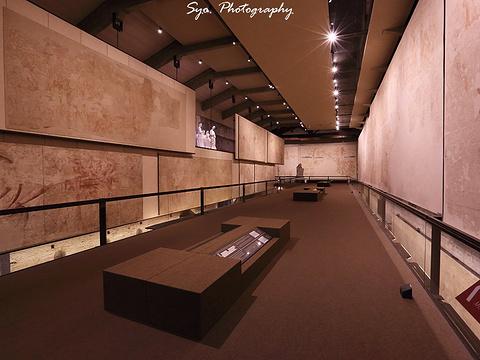 比萨大教堂博物馆旅游景点图片