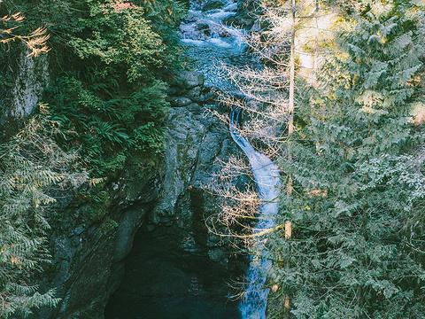 林恩峡谷公园旅游景点图片