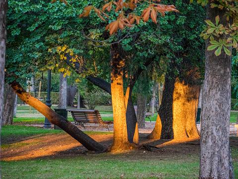 丽池公园旅游景点图片
