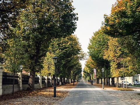 美泉宫花园旅游景点图片