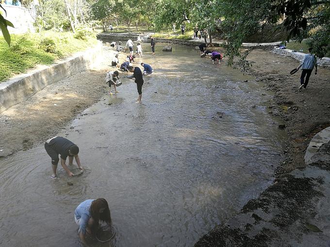 南菇河淘宝场图片