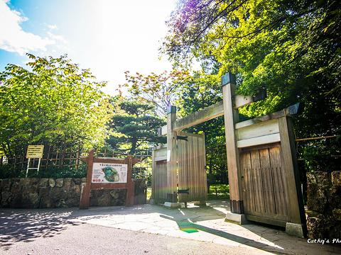 中岛公园旅游景点图片