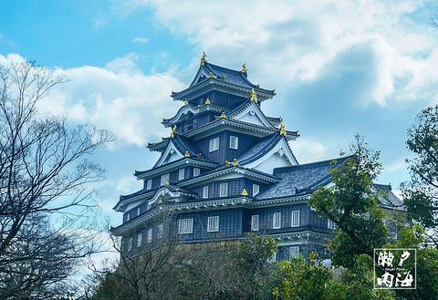 冈山城的图片
