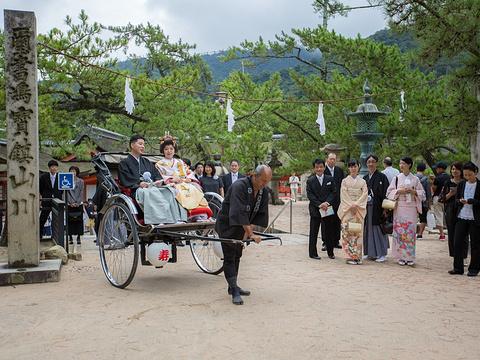 宫岛大圣院旅游景点图片