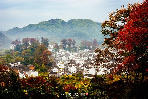 石城程村的图片