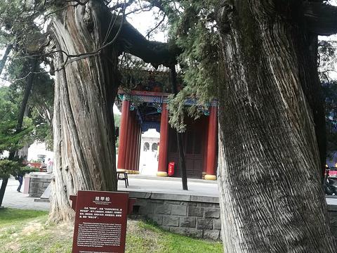 轩辕庙旅游景点图片