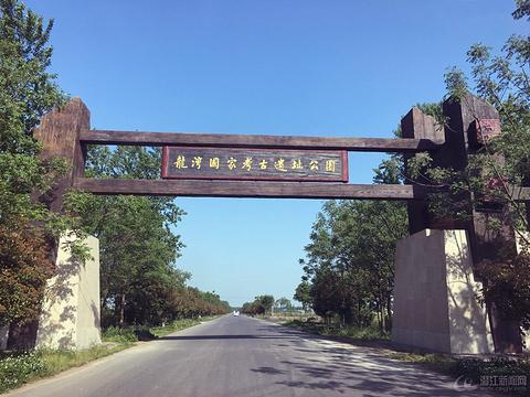 龙湾遗址展示园的图片