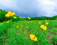 夏日物语,遇见长春二十二度的清凉