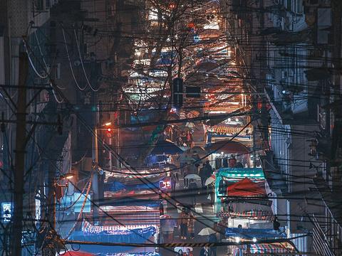 保成路夜市旅游景点图片