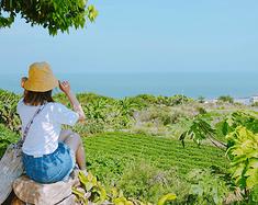 好活的时候,就去浪吧!——厦门&漳州镇海角4日游游记