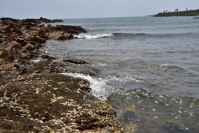 第二海水浴场图片