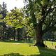 加蒂诺公园