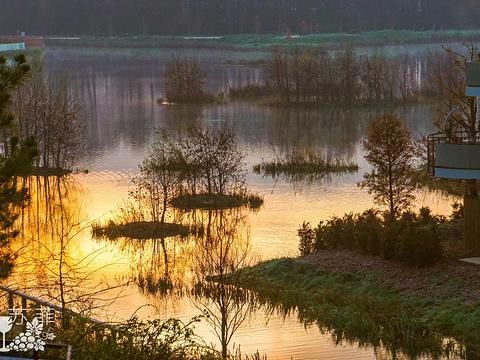 塞纳河旅游景点图片