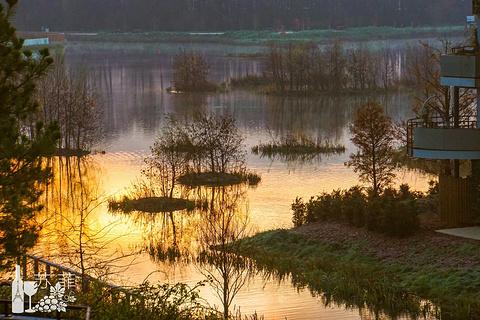 塞纳河的图片