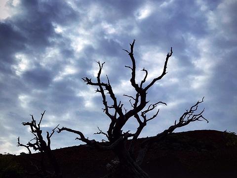 冒纳凯阿火山旅游景点图片